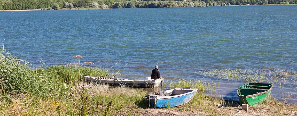 Le feeder la pêche i vidéo apprenant